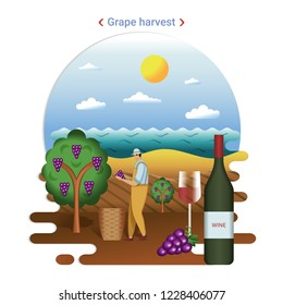Flat farm landscape illustration of grape harvest. Rural landscape with grape valley,  seaside. The farmer harvesting grapes for wine production.
