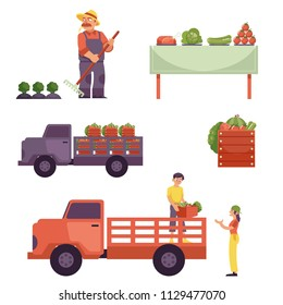 Flat farmer products delivery process from harvest to market. Man in professional uniform - rubber boots, overalls working on crop field, food delivering by truck served at table. Vector illustration