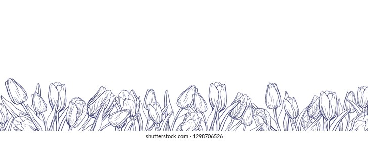 Flat horizontal background template with hand drawn tulips. Ink sketch of  spring flowers. Elements for design in pale tender colors.