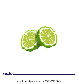 Flat Icon of bergamot. Isolated on white background. Modern vector illustration for web and mobile.