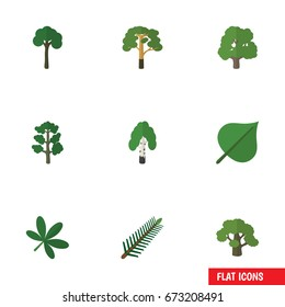 Flat Icon Ecology Set Of Tree, Forest, Wood And Other Vector Objects. Also Includes Rosemary, Timber, Forest Elements.