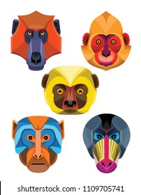 Flat icon mascot style illustration of heads of Old World monkeys like the baboon,  white-headed, golden-headed or Cat Ba langur,  diademed sifaka or  lemur , rhesus macaque and mandrill or drill .