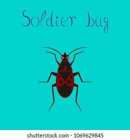 flat icon on stylish background soldier bug
