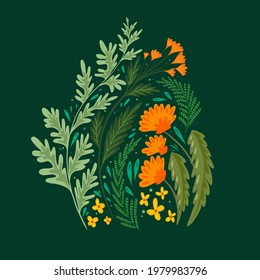 Flat illustration of grass and flower fields. A bouquet of wormwood, fennel, dandelion and St. Johns wort on a dark green background. Vector summer and bright flower image.