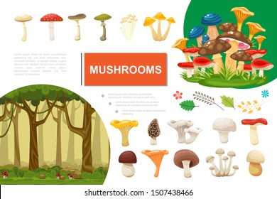 Flat mushrooms colorful composition with forest leaves branches edible and poisonous mushrooms vector illustration