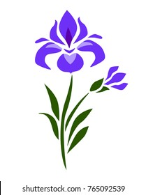 Flat ornamental vector iris flover purple on white japanese style