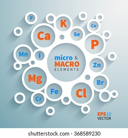 Flat paper circles composition with the names of important micro and macronutrients to human health
