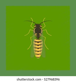 flat shading style illustration insect wasp
