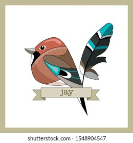 Flat style birds with feather. Jay bird. Cartoon design.  Hand drawn color vector. Modern fashionable illustration. For logo, sticker
