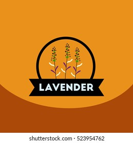 flat vector icon design collection Kitchenware seasoning lavender