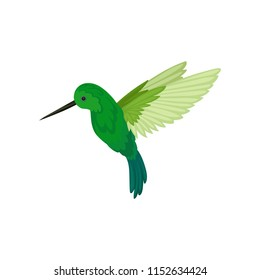 Flat vector icon of flying colibri. Small tropical hummingbird with long thin beak and bright green feathers. Wildlife theme