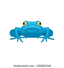 Flat vector icon of funny frog, front view. Amphibian with big yellow eyes. Element for mobile game or children book