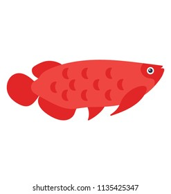 A flat vector icon image of a tropical fish arowana