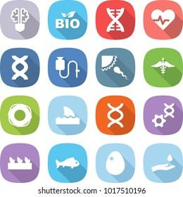 flat vector icon set - bulb brain vector, bio, dna, heart pulse, dropper, sperm, ambulance sign, lifebuoy, shark flipper, edit, seedling, fish, egg, hand and drop