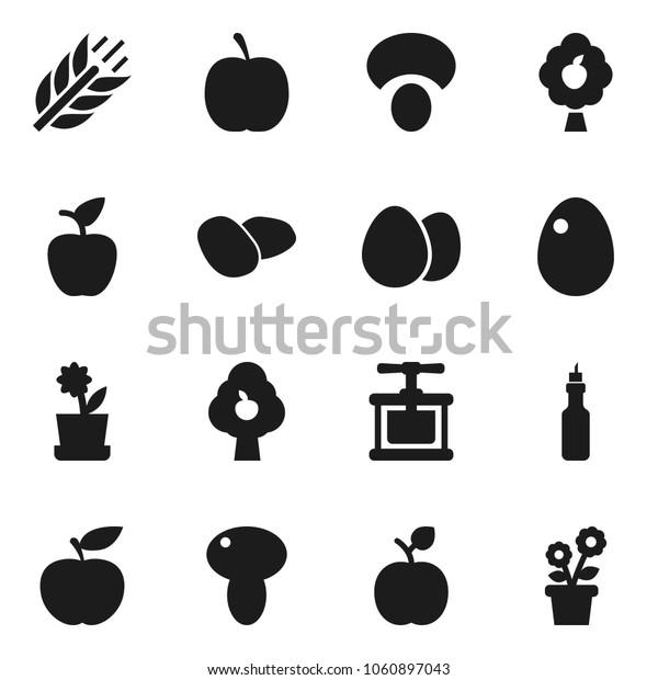 Flat vector icon set - cook press vector, egg, mushroom, potato, oil, apple fruit, diet, cereals, tree, flower in pot