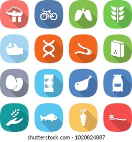 flat vector icon set - factory filter vector, bike, lungs, spikelets, acid, dna, walnut crack, cereals, eggs, pasta, chicken leg, flour, harvest, fish, carrot, tooth brush