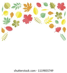 Flat vector illustration: autumn tree leaves (elm, beech, ash, linden, birch, alder, aspen, willow, maple,  poplar, rowan,, walnut, apple, oak, acacia, chestnut, conker) isolated on whtie background