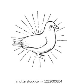 Flat vector illustration - The blue dove. Cartoon character