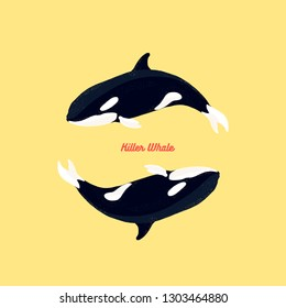 Flat vector illustration - Orca killer whale
