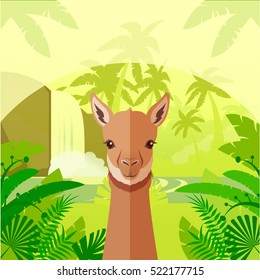 Flat Vector image of the Vicuna on the Jungle Background