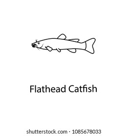 flathead catfish icon. Element of marine life for mobile concept and web apps. Thin line flathead catfish icon can be used for web and mobile. Premium icon on white background