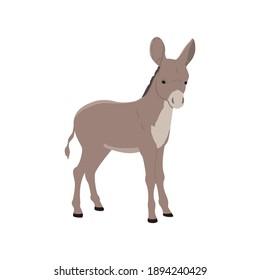 flaticon animal donkey vector illustration