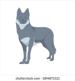 flaticon animal wolf vector illustration