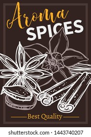 Flavoring spices chalk hand drawn poster template. Orchid flower and vanilla pods outline illustration. Flavoring cinnamon sticks sketch. Condiments, cooking ingredients store banner