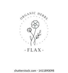 Flax flower. Logo for spa and beauty salon, boutique, organic shop, wedding, floral designer, interior, photography, cosmetic. Botanical floral element.