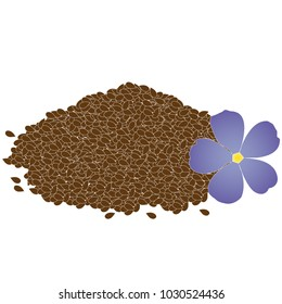 Flax seed and flower. Vector