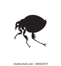 flea home insect parasite vector illustration - set of household pests in pure style