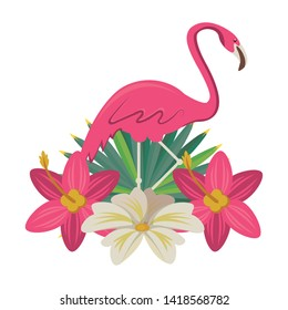 flemish with tropical flower icon cartoon isolated vector illustration graphic design
