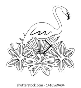flemish with tropical flower icon cartoon isolated in black and white vector illustration graphic design