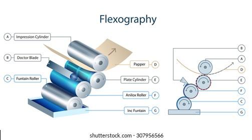 Flexo printing mechanism info-graphic