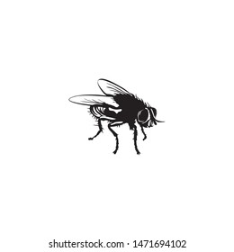 flies icon silhouette vector illustration