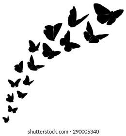 Flight Of Black Butterflies