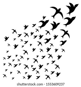 A flock of birds. flying black swallows on a white background. Tattoo, print on t-shirt, autumn, spring, sky.