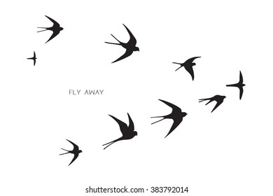flock of birds silhouette swallow