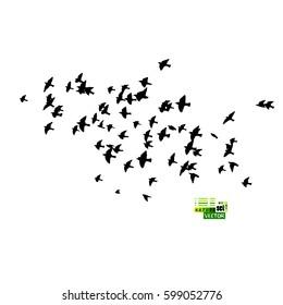 Flock of birds silhouette. Vector