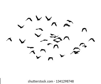 A flock of birds in the sky. Vector illustration