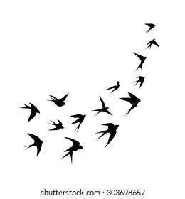 A flock of birds (swallows) go up. Black silhouette on a white background. Vector illustration.
