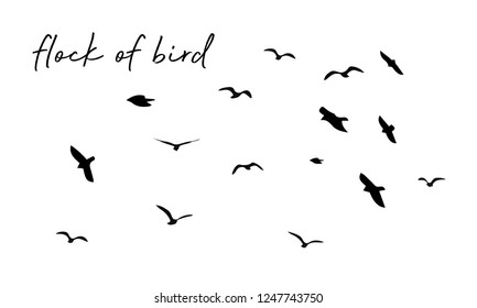 Flock of birds. vector bird wing.
