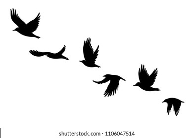 Flock of crows. Vector illustration for printing on clothes, cards, posters, cover for notebook.
