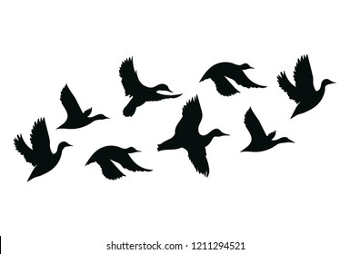 Flock of ducks. A cartoon flock of birds. Vector illustration of flying birds. Drawing for children.