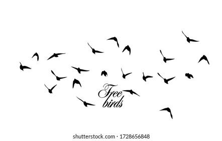 A flock of flying silhouette birds. Vector illustration