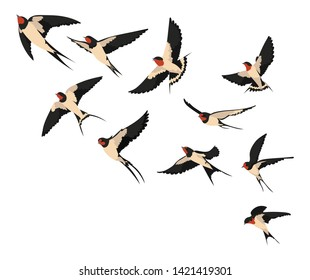 A flock of flying swallows. Vector illustration of cartoon swallows for children. Color drawing flocks of birds.