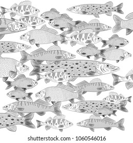 A flock of popular freshwater fish floating in a different direction. Pike, carp, perch, pike, crucian carp. Vector illustration