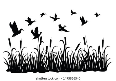 A flock of wild ducks flying over a pond with reeds. Black and white illustration of ducks flying over the river. Vector drawing of a wild bird for the hunter. Tattoo.