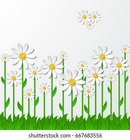 Floral background with 3d chamomiles on the grass cutting paper isolated on white. Vector illustration
