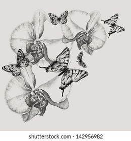 Floral background with blooming orchids and butterflies, hand-drawing. Vector illustration.